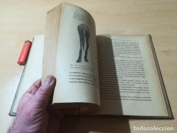 Libros antiguos: ENCICLOPEDIA VETERINARIA C CADEAC / PATOLOGIA QUIRURGICA ARTICULACIONES T DUODECIMO / ED FELIPE GONZ - Foto 8 - 225050865