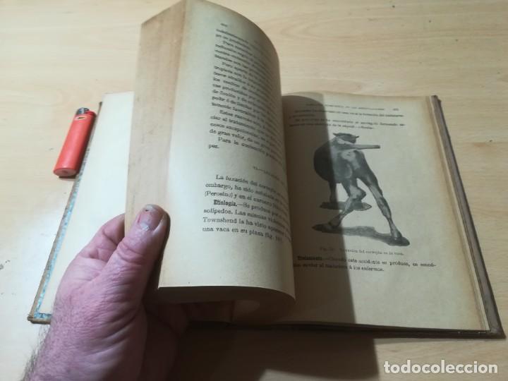 Libros antiguos: ENCICLOPEDIA VETERINARIA C CADEAC / PATOLOGIA QUIRURGICA ARTICULACIONES T DUODECIMO / ED FELIPE GONZ - Foto 10 - 225050865