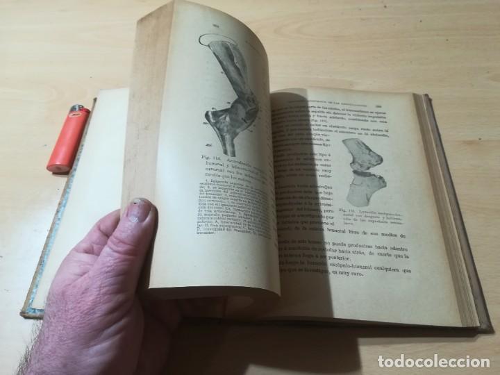 Libros antiguos: ENCICLOPEDIA VETERINARIA C CADEAC / PATOLOGIA QUIRURGICA ARTICULACIONES T DUODECIMO / ED FELIPE GONZ - Foto 12 - 225050865