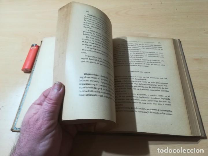Libros antiguos: ENCICLOPEDIA VETERINARIA C CADEAC / PATOLOGIA QUIRURGICA ARTICULACIONES T DUODECIMO / ED FELIPE GONZ - Foto 14 - 225050865