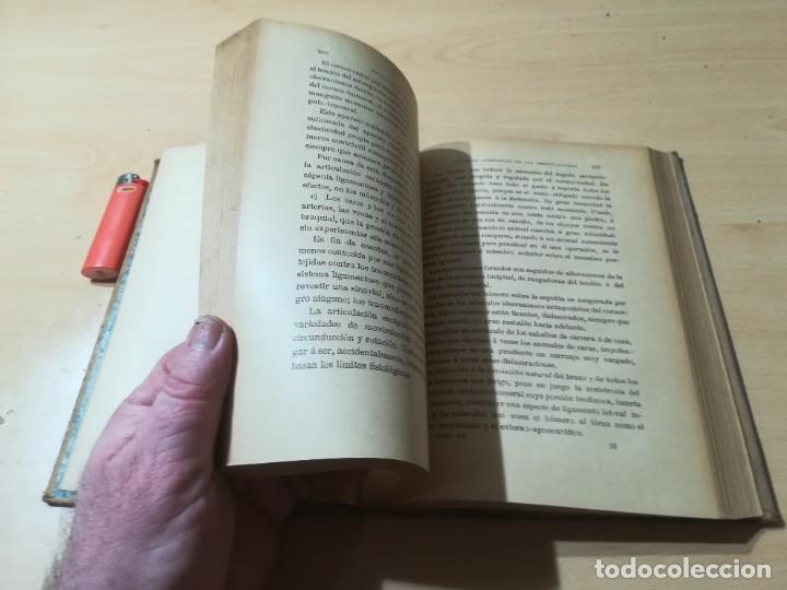 Libros antiguos: ENCICLOPEDIA VETERINARIA C CADEAC / PATOLOGIA QUIRURGICA ARTICULACIONES T DUODECIMO / ED FELIPE GONZ - Foto 16 - 225050865
