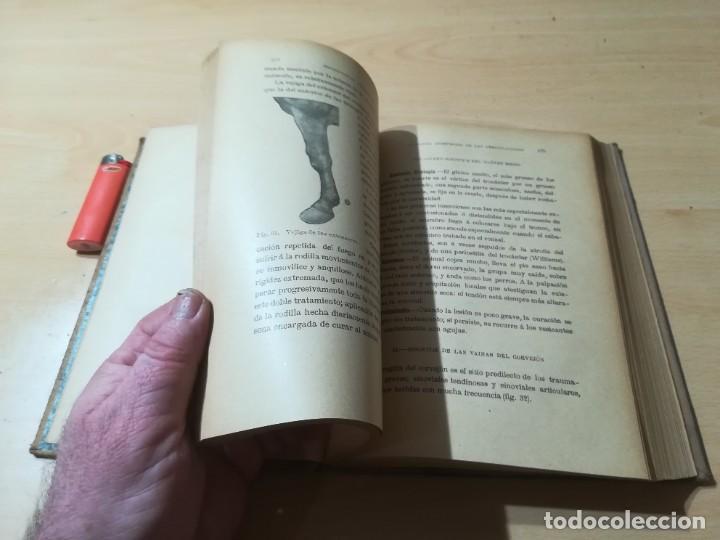 Libros antiguos: ENCICLOPEDIA VETERINARIA C CADEAC / PATOLOGIA QUIRURGICA ARTICULACIONES T DUODECIMO / ED FELIPE GONZ - Foto 18 - 225050865