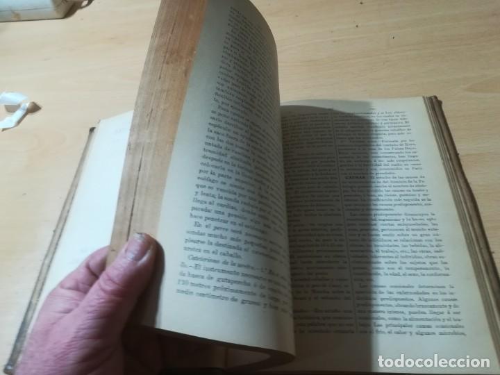 Libros antiguos: DICCIONARIO DE VETERINARIA, CAGNY - GOBERT / TOMO PRIMERO / ED FELIPE GONZALEZ ROJAS / Q306 - Foto 9 - 225052506
