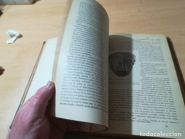Libros antiguos: DICCIONARIO DE VETERINARIA, CAGNY - GOBERT / TOMO PRIMERO / ED FELIPE GONZALEZ ROJAS / Q306 - Foto 14 - 225052506