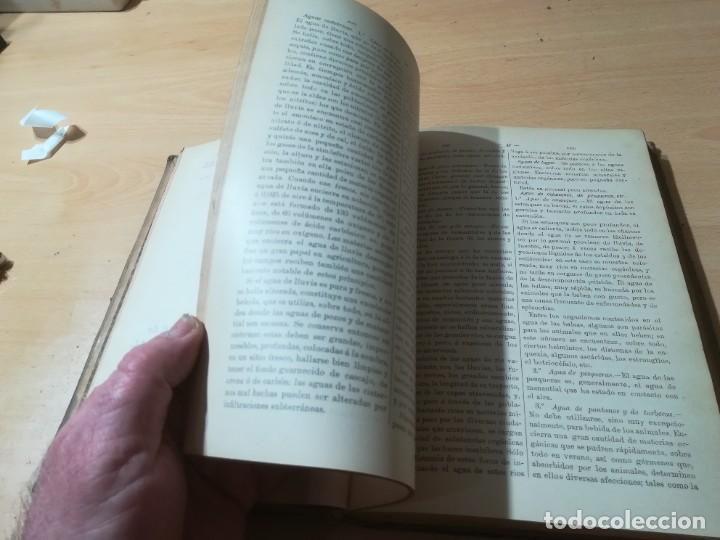 Libros antiguos: DICCIONARIO DE VETERINARIA, CAGNY - GOBERT / TOMO PRIMERO / ED FELIPE GONZALEZ ROJAS / Q306 - Foto 15 - 225052506