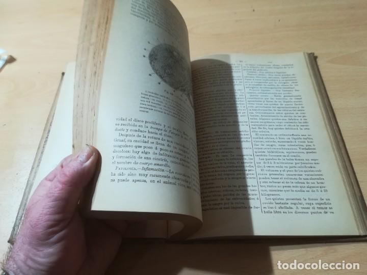 Libros antiguos: DICCIONARIO DE VETERINARIA, CAGNY - GOBERT / TOMO TERCERO / ED FELIPE GONZALEZ ROJAS / Q306 - Foto 9 - 225052605