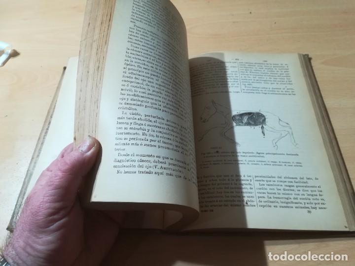 Libros antiguos: DICCIONARIO DE VETERINARIA, CAGNY - GOBERT / TOMO TERCERO / ED FELIPE GONZALEZ ROJAS / Q306 - Foto 10 - 225052605