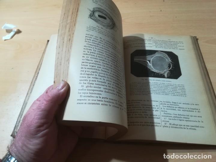 Libros antiguos: DICCIONARIO DE VETERINARIA, CAGNY - GOBERT / TOMO TERCERO / ED FELIPE GONZALEZ ROJAS / Q306 - Foto 11 - 225052605