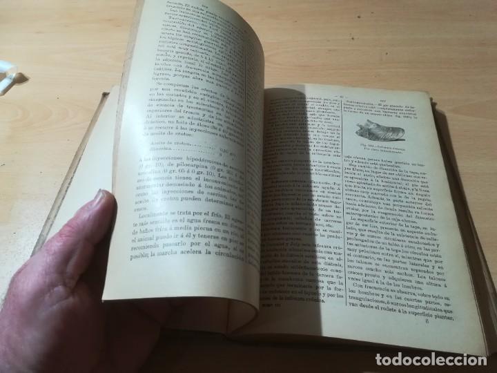 Libros antiguos: DICCIONARIO DE VETERINARIA, CAGNY - GOBERT / TOMO TERCERO / ED FELIPE GONZALEZ ROJAS / Q306 - Foto 13 - 225052605