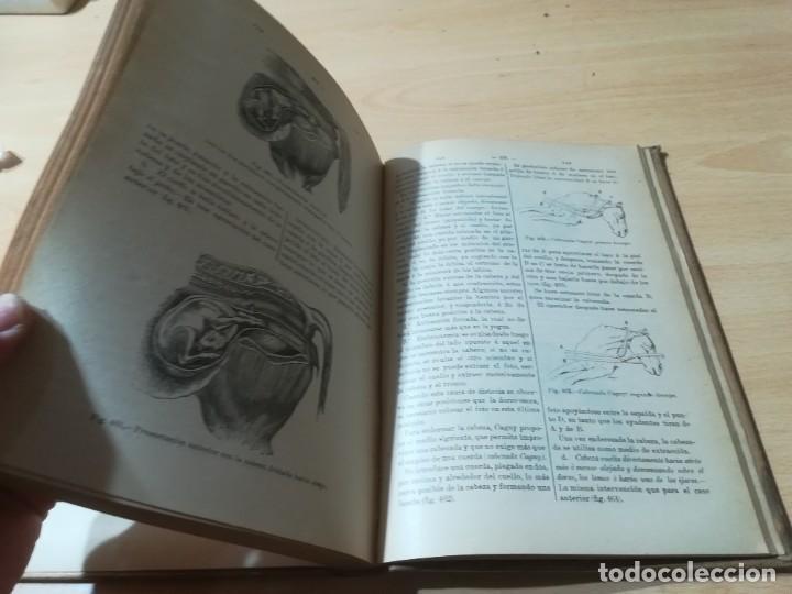 Libros antiguos: DICCIONARIO DE VETERINARIA, CAGNY - GOBERT / TOMO TERCERO / ED FELIPE GONZALEZ ROJAS / Q306 - Foto 14 - 225052605