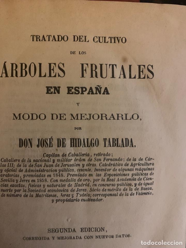 TRATADO DEL CULTIVO DE ÁRBOLES FRUTALES EN ESPAÑA 1871 (Libros Antiguos, Raros y Curiosos - Ciencias, Manuales y Oficios - Biología y Botánica)