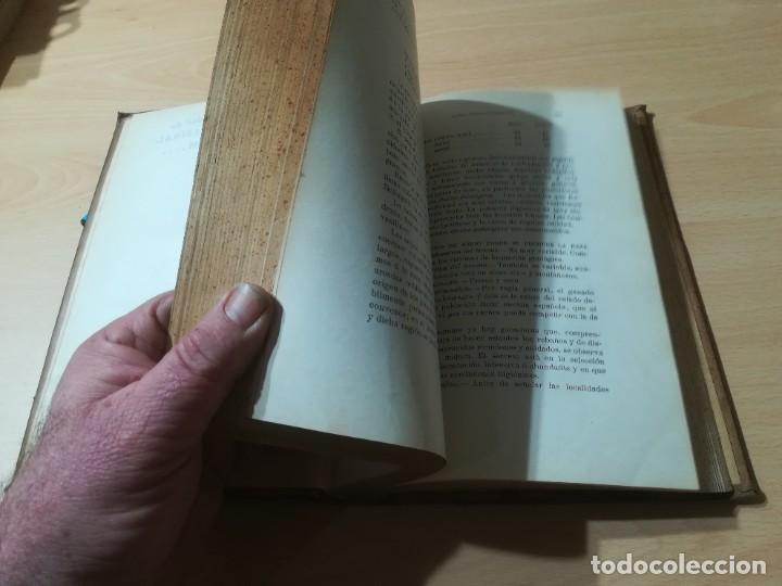 Libros antiguos: ZOOTECNIA - TRATADO DE GANADERIA E INDUSTRIAS RURALES / PEDRO MOYANO / 1907 IMPRENTA HOSPICIO ZARAGO - Foto 12 - 226130925