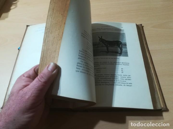 Libros antiguos: ZOOTECNIA - TRATADO DE GANADERIA E INDUSTRIAS RURALES / PEDRO MOYANO / 1907 IMPRENTA HOSPICIO ZARAGO - Foto 14 - 226130925