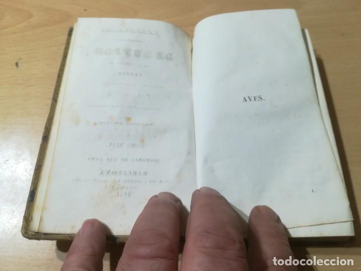 Libros antiguos: OBRAS COMPLETAS DE BUFFON / XLIV HISTORIA DE LAS AVES / 1841 BERGNES Y Cª BARCELONA / AB105 - Foto 7 - 226612465