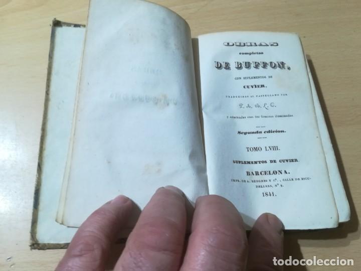 Libros antiguos: OBRAS COMPLETAS DE BUFFON / LVIII HISTORIA DE LOS CUADRUPEDOS / 1841 BERGNES Y Cª BARCELONA / AB105 - Foto 4 - 226614980