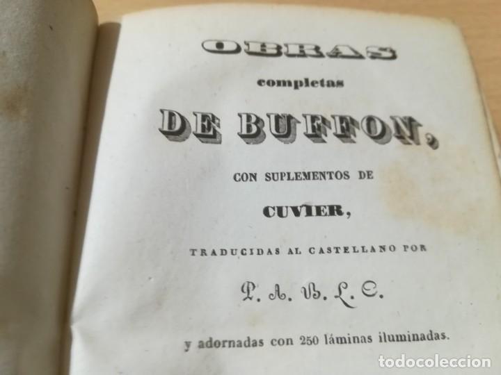 Libros antiguos: OBRAS COMPLETAS DE BUFFON / LVIII HISTORIA DE LOS CUADRUPEDOS / 1841 BERGNES Y Cª BARCELONA / AB105 - Foto 5 - 226614980