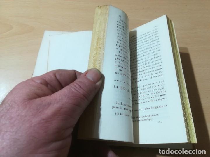 Libros antiguos: OBRAS COMPLETAS DE BUFFON / XLVI HISTORIA DE LAS AVES / 1841 BERGNES Y Cª BARCELONA / AB105 - Foto 10 - 226622510
