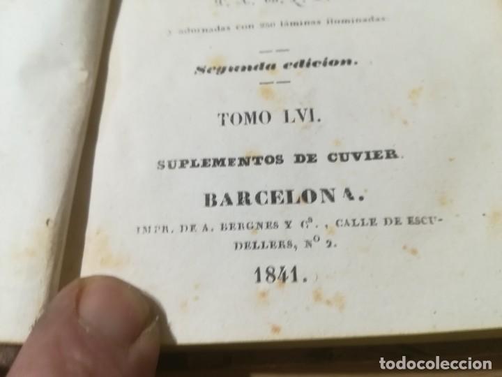 Libros antiguos: OBRAS COMPLETAS DE BUFFON / LVI SUPLEMENTOS DE CUVIER / 1841 BERGNES Y Cª BARCELONA / F207 19,75 - Foto 7 - 226624110