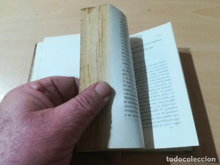 Libros antiguos: OBRAS COMPLETAS DE BUFFON / XLI HISTORIA DE LAS AVES / 1841 BERGNES Y Cª BARCELONA / F207 - Foto 7 - 226624785