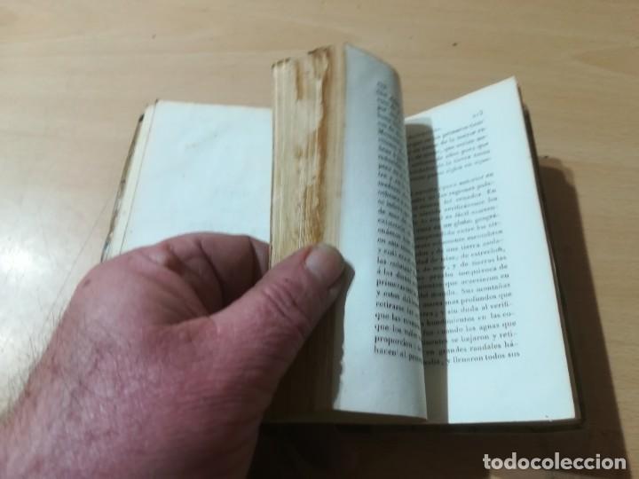 Libros antiguos: OBRAS COMPLETAS DE BUFFON / VII EPOCAS DE LA NATURALEZA / 1841 BERGNES Y Cª BARCELONA / F207 - Foto 7 - 226624900