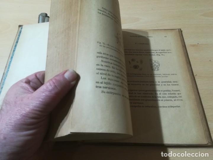 Libros antiguos: ENCICLOPEDIA VETERINARIA PATOLOGIA QUIRURGICA GENERAL / LEBLANC / CADEAC / GAROUGEAU / VIII / AB201 - Foto 8 - 226646340