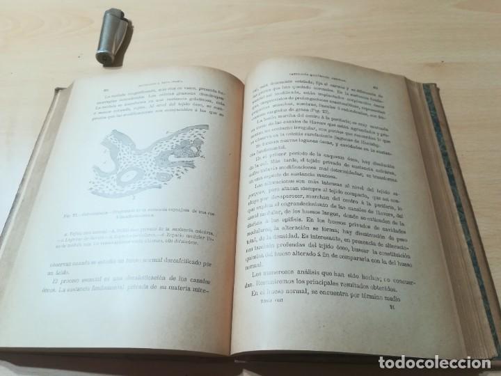 Libros antiguos: ENCICLOPEDIA VETERINARIA PATOLOGIA QUIRURGICA GENERAL / LEBLANC / CADEAC / GAROUGEAU / VIII / AB201 - Foto 14 - 226646340