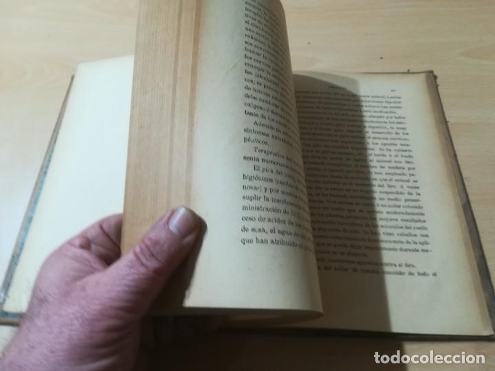 Libros antiguos: ENCICLOPEDIA VETERINARIA / SEMIOLOGIA DIAGNOSTICO TRATAMIENTO ANIMALES DOMESTICOS / GADEAC II - III - Foto 9 - 226647035