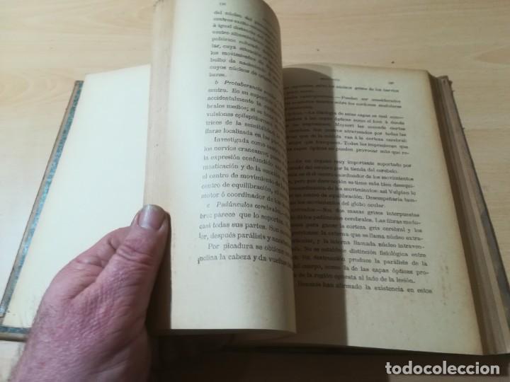 Libros antiguos: ENCICLOPEDIA VETERINARIA / SEMIOLOGIA DIAGNOSTICO TRATAMIENTO ANIMALES DOMESTICOS / GADEAC II - III - Foto 14 - 226647035