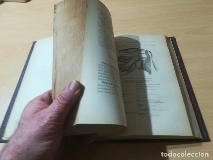 Libros antiguos: CIRUJIA ESPECIAL VETERINARIA CIRUGIA / JUAN ANTONIO SAINZ Y ROZAS / 1885 CALISTO ARIÑO ZARAGOZA / I- - Foto 11 - 226650085