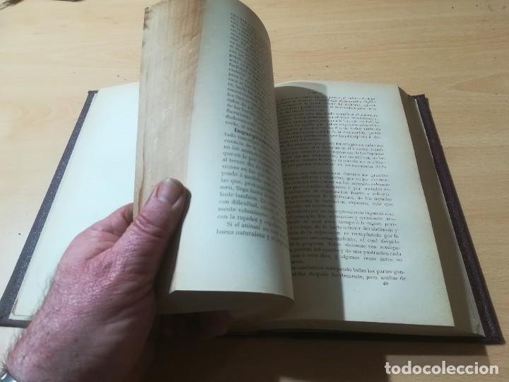 Libros antiguos: CIRUJIA ESPECIAL VETERINARIA CIRUGIA / JUAN ANTONIO SAINZ Y ROZAS / 1885 CALISTO ARIÑO ZARAGOZA / I- - Foto 13 - 226650085