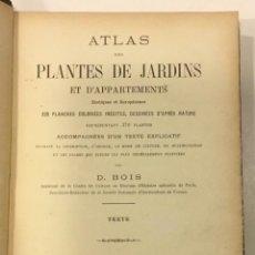 Libros antiguos: ATLAS DES PLANTES DE JARDINS ET D'APPARTEMENTS EXOTIQUES ET EUROPÉENNES... TEXTE. BOIS, D. 1896.. Lote 226842580