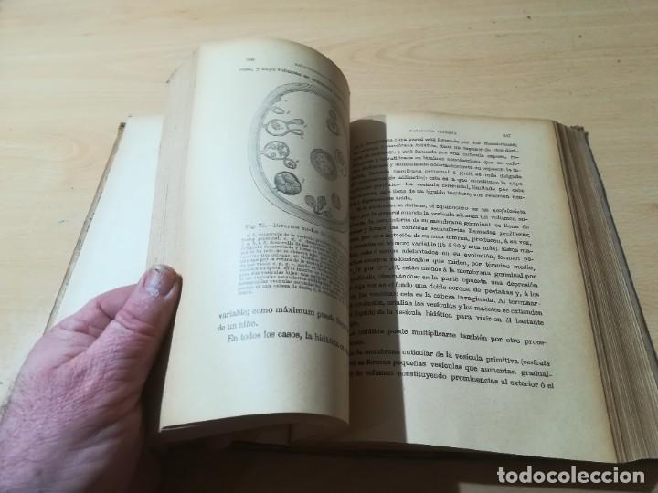 Libros antiguos: ENCICLOPEDIA VETERINARIA CADEAC / TOMO III PATOLOGIA INTERNA / PANCREAS HIGADO PERITORENO FOSAS NASA - Foto 13 - 227038350