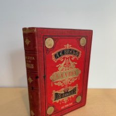 Livros antigos: BREHM / LA VIDA DE LOS ANIMALES / MAMIFEROS / 2 TOMOS / COMPLETA / CAZA / GRABADOS / PRIMERA EDICION. Lote 227554450