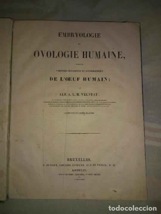 Libros antiguos: EMBRIOLOGIA O OVOLOGIA HUMANA - AÑO 1834 - VELPEAU - BELLAS PLANCHAS EN FOLIO. - Foto 2 - 229213030