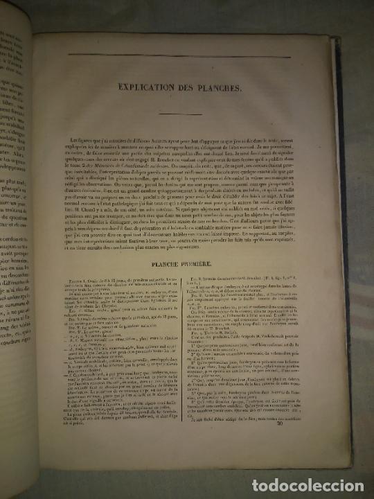 Libros antiguos: EMBRIOLOGIA O OVOLOGIA HUMANA - AÑO 1834 - VELPEAU - BELLAS PLANCHAS EN FOLIO. - Foto 4 - 229213030
