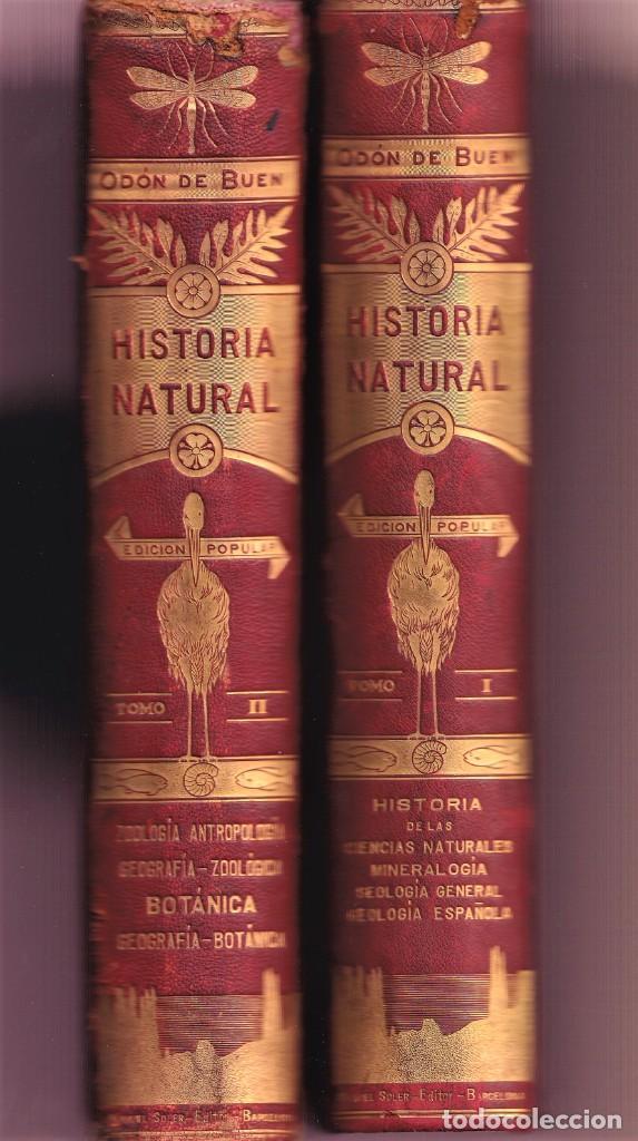 HISTORIA NATURAL POR ODON DE BUEN -2 TOMOS PIEL Y ORO CON GRABADOS - BARCELONA - MANUEL SOLER 1897 (Libros Antiguos, Raros y Curiosos - Ciencias, Manuales y Oficios - Biología y Botánica)