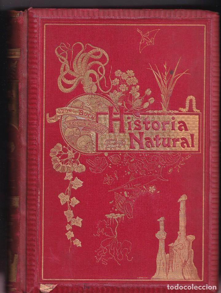 Libros antiguos: HISTORIA NATURAL POR ODON DE BUEN -2 TOMOS PIEL Y ORO CON GRABADOS - BARCELONA - MANUEL SOLER 1897 - Foto 3 - 234036715