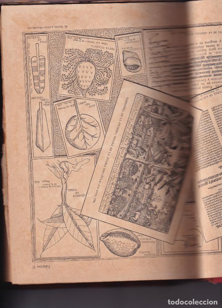 Libros antiguos: HISTORIA NATURAL POR ODON DE BUEN -2 TOMOS PIEL Y ORO CON GRABADOS - BARCELONA - MANUEL SOLER 1897 - Foto 4 - 234036715