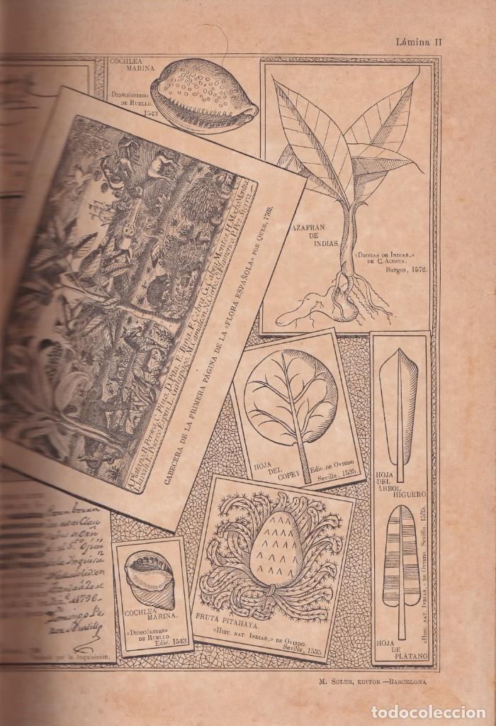 Libros antiguos: HISTORIA NATURAL POR ODON DE BUEN -2 TOMOS PIEL Y ORO CON GRABADOS - BARCELONA - MANUEL SOLER 1897 - Foto 5 - 234036715