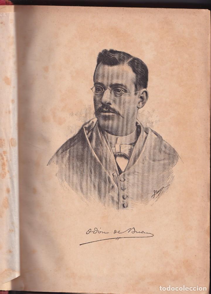 Libros antiguos: HISTORIA NATURAL POR ODON DE BUEN -2 TOMOS PIEL Y ORO CON GRABADOS - BARCELONA - MANUEL SOLER 1897 - Foto 6 - 234036715