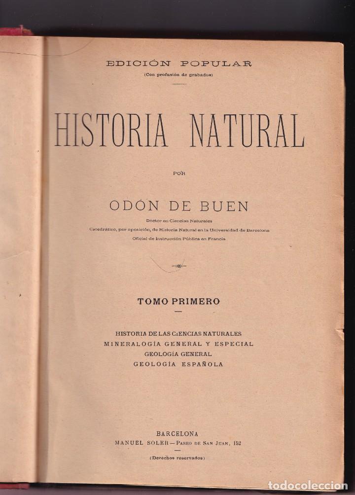 Libros antiguos: HISTORIA NATURAL POR ODON DE BUEN -2 TOMOS PIEL Y ORO CON GRABADOS - BARCELONA - MANUEL SOLER 1897 - Foto 7 - 234036715