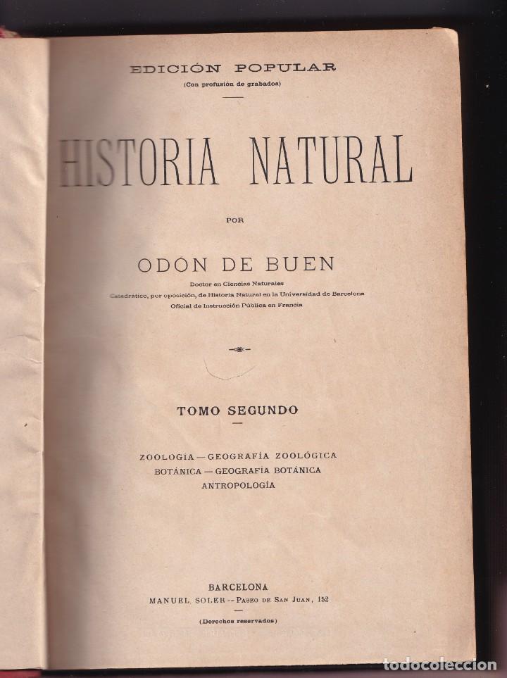 Libros antiguos: HISTORIA NATURAL POR ODON DE BUEN -2 TOMOS PIEL Y ORO CON GRABADOS - BARCELONA - MANUEL SOLER 1897 - Foto 8 - 234036715