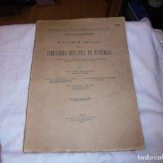 Libros antiguos: DICTAMEN OFICIAL SOBRE LA INDUSTRIA HULLERA EN ASTURIAS.ALDECOA/ARTIGAS/LOYGORRI/CAMACHO 1926. Lote 238674210