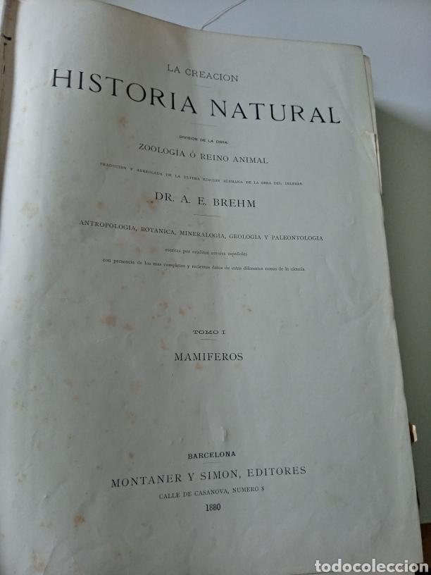 Libros antiguos: La Creacion Historia Natural 1880. Dr. A. E. Brehm. 7 volumenes . - Foto 5 - 240660865