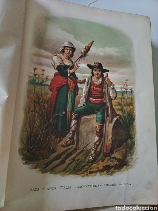 Libros antiguos: La Creacion Historia Natural 1880. Dr. A. E. Brehm. 7 volumenes . - Foto 6 - 240660865