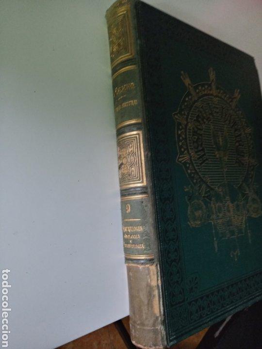 Libros antiguos: La Creacion Historia Natural 1880. Dr. A. E. Brehm. 7 volumenes . - Foto 20 - 240660865