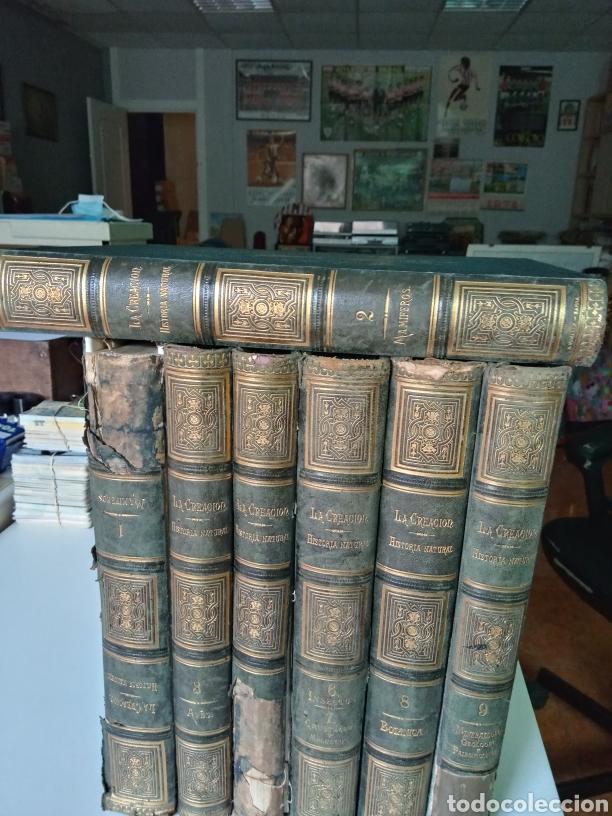 LA CREACION HISTORIA NATURAL 1880. DR. A. E. BREHM. 7 VOLUMENES . (Libros Antiguos, Raros y Curiosos - Ciencias, Manuales y Oficios - Biología y Botánica)