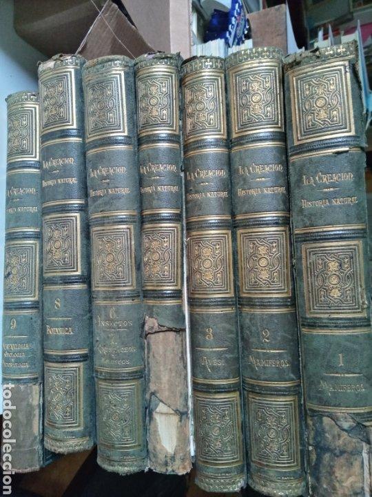 Libros antiguos: La Creacion Historia Natural 1880. Dr. A. E. Brehm. 7 volumenes . - Foto 2 - 240660865