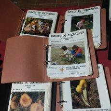 Livros antigos: LIBROS DE SETAS. Lote 242366905