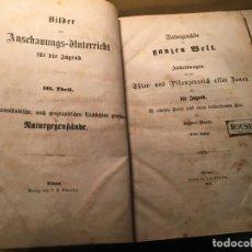 Libros antiguos: NATUR5GEMALDE DER GANZEN MELT ABBILDUNGEN AUS DEM THIER- UND PFLANGENREICH ALLER BONEN FUR DIE JUGEN. Lote 243565990